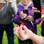 25/09/2015       